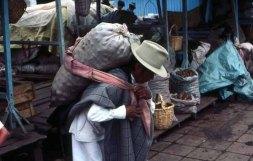 Potato carrier, Ecuador