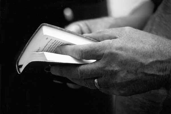 Bible_14213M2W