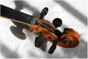 Violin in Grekul house ??