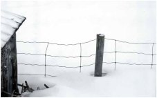 Wire fence in snow