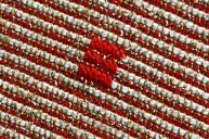 """December 2010: Diagonals, """"Red and white"""""""