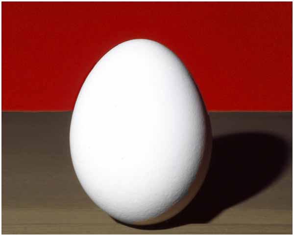 WHVB_Egg2014ia