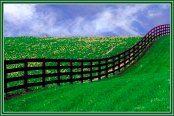 CurvedFence_13487PCb