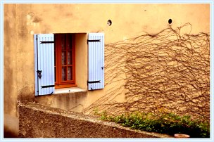 Window_16817b
