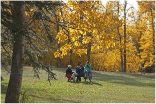 Edmonton park