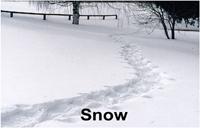 snowtrail_14844grtxt2