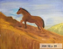 #9 Horse