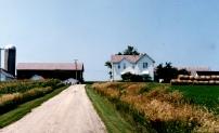 Westra farm East Friesland 1990s