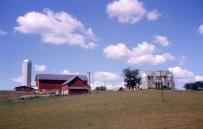 Westra farm East Friesland 1964