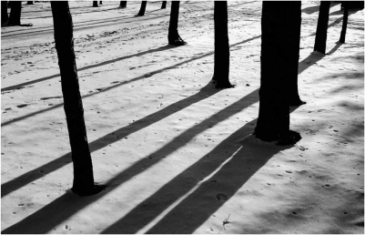 "October 2018: Shadows, ""Winter lines"""