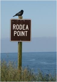 Rodea Point
