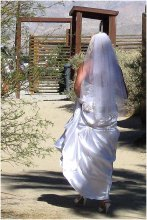 The bride in the grove