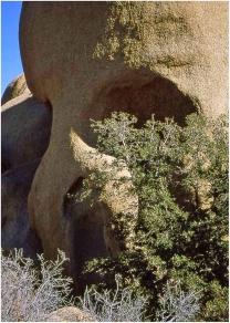 Skull Rock, Joshua Tree 1999