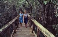 Everglades 1984