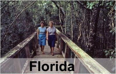 Everglades_6250GRT