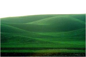 Idaho hills 1997