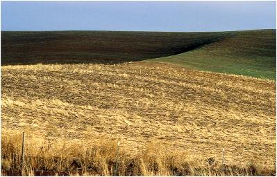 Idaho 1997