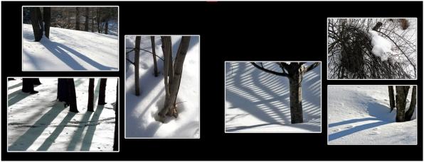 SnowIce_10