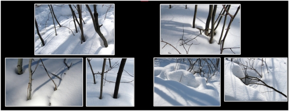 SnowIce_11
