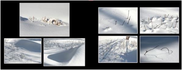 SnowIce_13