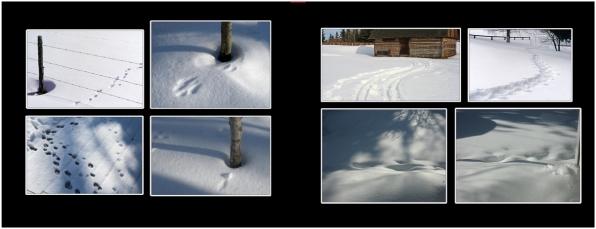 SnowIce_28