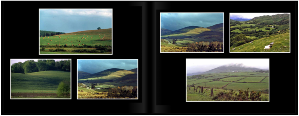 LandscapesPg_0203a