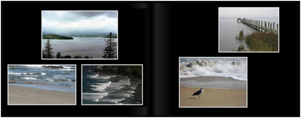 LandscapesPg_4445a