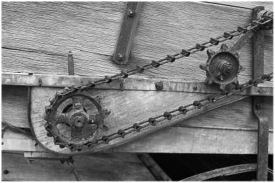Gear and chain