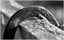 Horseshoe on fence