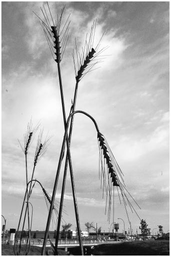 Wheat sculpture Weyburn