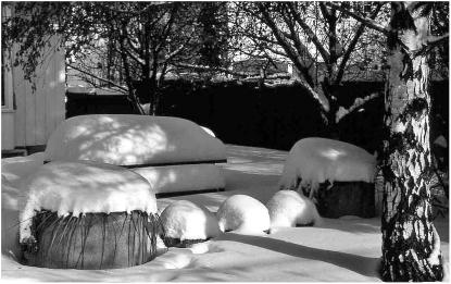 Backyard 9520