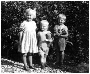 04Bertha 1937q